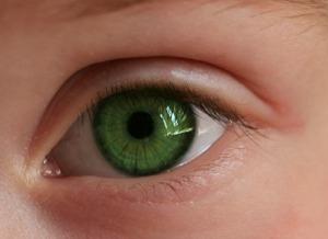 ochi-verde